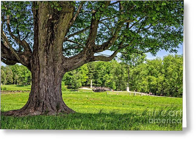 Concord Greeting Cards - Minute Man National Historical Park  Greeting Card by Edward Fielding