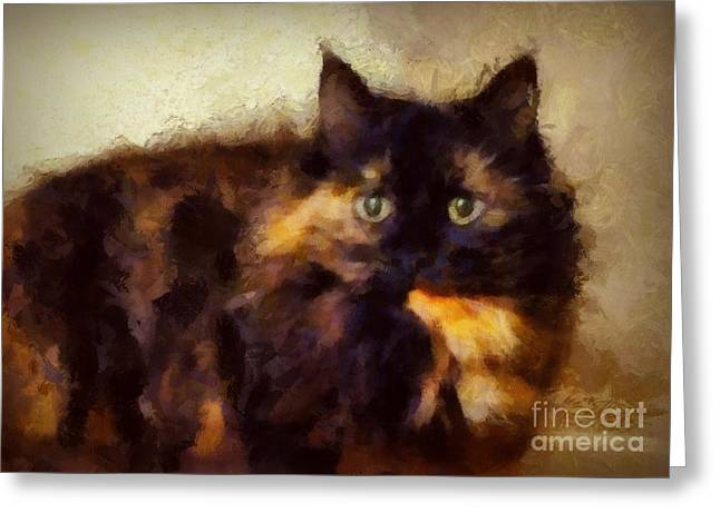 Shelter Kitty Greeting Cards - Miranda Greeting Card by Patricia Strand