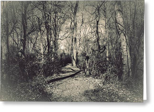 Lord Of The Rings Photographs Greeting Cards - Mirkwood Greeting Card by Jessica Brawley
