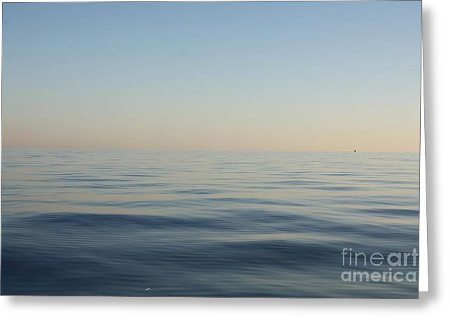 Ocean Images Greeting Cards - Mirror Image On Atlantic Ocean Greeting Card by John Telfer
