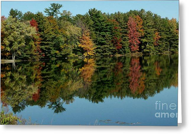 Art Buyers Greeting Cards - Mirror Mirror on the wall Fall is Fairest one of All Greeting Card by Gail Matthews