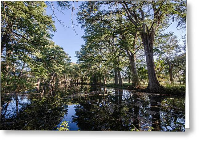 Mirror On The Frio Greeting Card by Jeffrey W Spencer