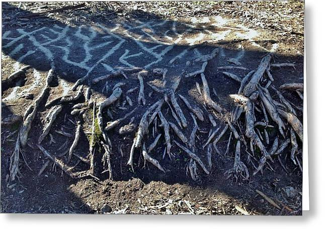 Tree Roots Greeting Cards - Mirrored Roots Greeting Card by Skye Dreamer