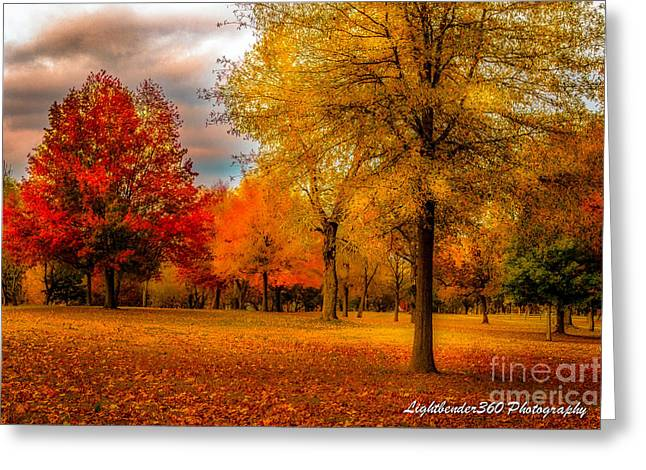Fort Smith Arkansas Greeting Cards - Missing Fall Greeting Card by Larry McMahon