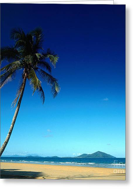 Mission Beach And Dunk Island Greeting Card by Dale Boyer