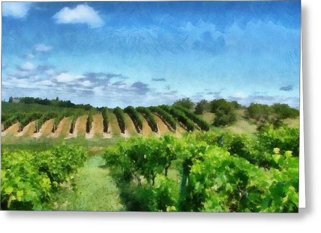 Grapevines Greeting Cards - Mission Peninsula Vineyard ll Greeting Card by Michelle Calkins
