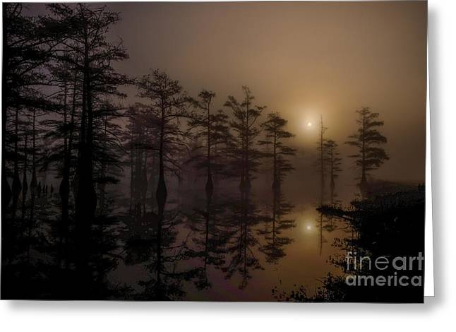 Boardroom Greeting Cards - Mississippi Foggy Delta Swamp at Sunrise Greeting Card by T Lowry Wilson