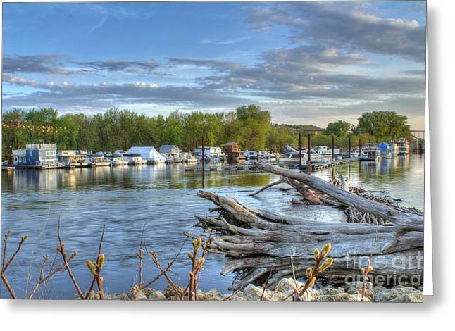 Boat Slip Greeting Cards - Mississippi Harbor 1 Greeting Card by Jimmy Ostgard