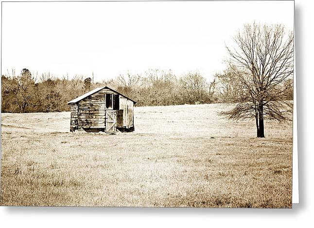 Out-building Greeting Cards - Mississippi Pasture Greeting Card by Scott Pellegrin
