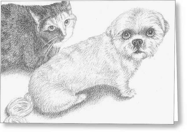 Cob Drawings Greeting Cards - Missy and Teddy Greeting Card by Conor OBrien