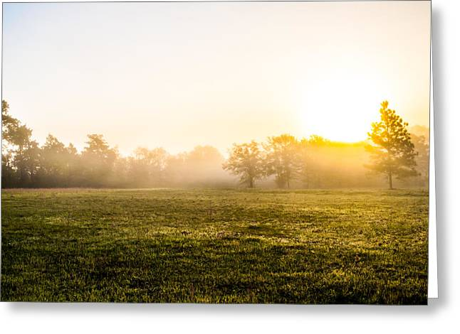 The Hills Greeting Cards - Mist at Sunrise Greeting Card by Shelby  Young