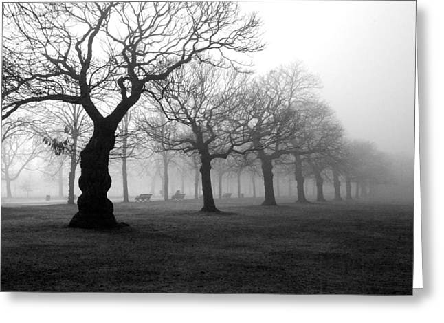 Black And White Nature Landscapes Greeting Cards - Mist in the park Greeting Card by Mark Rogan