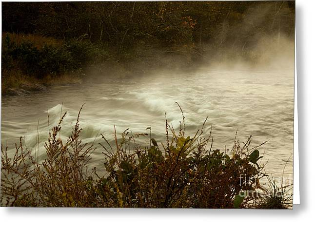Beavers Bend Park Greeting Cards - Mist in the Riverside Greeting Card by Iris Greenwell