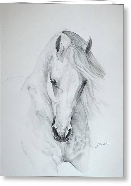 Art Horses Greeting Cards Greeting Cards - Misterioso 2 Greeting Card by Janina  Suuronen