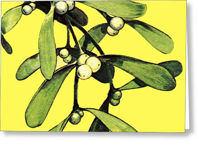 Mistletoe Greeting Cards - Mistletoe Greeting Card by English School