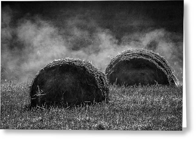 Hayrick Greeting Cards - Misty Bales Greeting Card by Brian Stevens