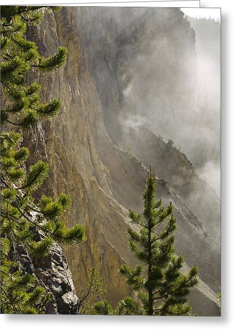 Tara Lynn Greeting Cards - Misty Canyon  Greeting Card by Tara Lynn