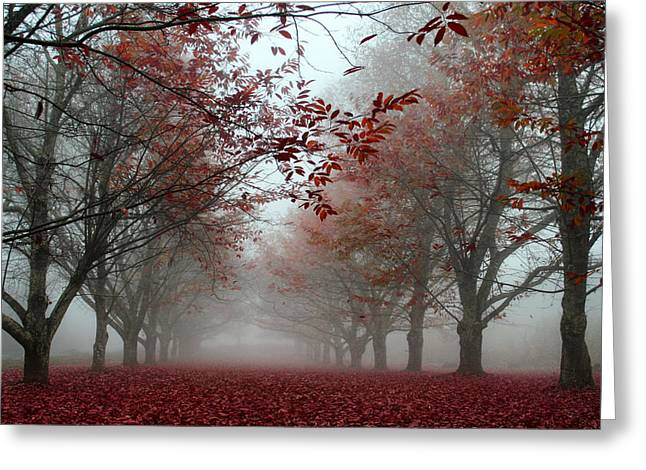 Fall Scenes Greeting Cards - Misty Chestnut Grove Greeting Card by Georgia Fowler
