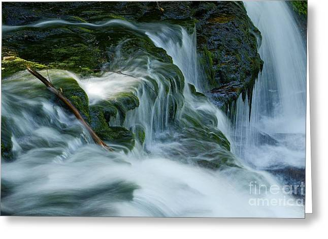 Moss Green Greeting Cards - Misty Falls - 74 Greeting Card by Paul W Faust -  Impressions of Light