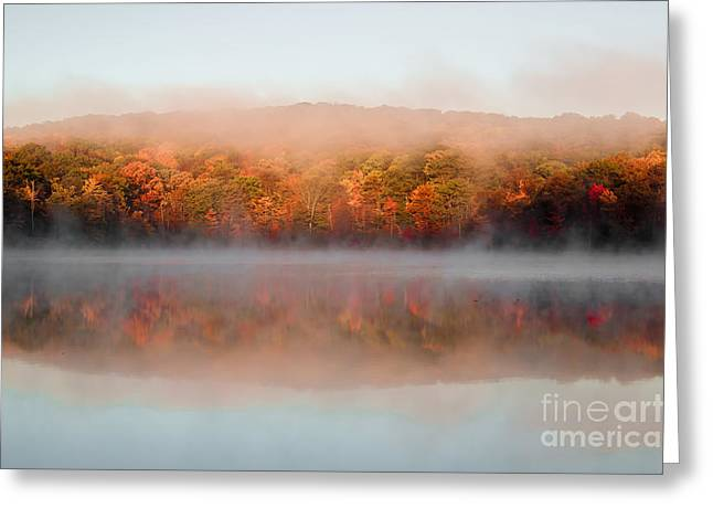 Turning Leaves Greeting Cards - Misty Foilage Greeting Card by Anthony Sacco