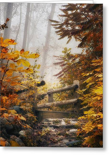 Ravine Greeting Cards - Misty Footbridge Greeting Card by Scott Norris