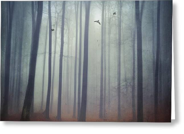 Eerie Greeting Cards - Misty Forest Greeting Card by Dirk Wuestenhagen