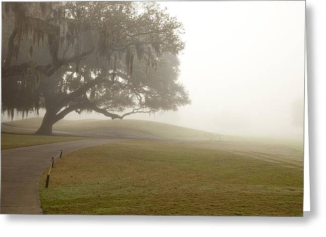Fog At Sea Greeting Cards - Misty Golf Course I Greeting Card by Barbara Marie Kraus