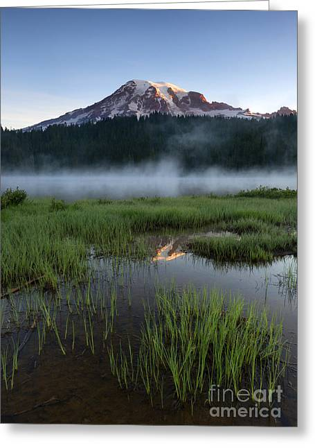 Mt Greeting Cards - Misty Majesty Greeting Card by Mike Dawson