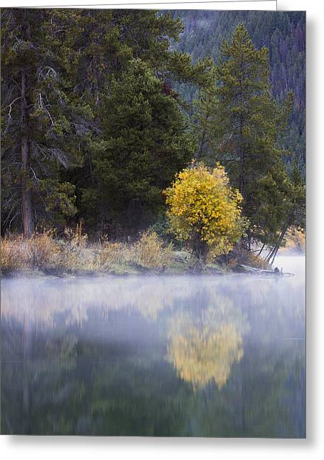 River Mist Greeting Cards - Misty Memories Greeting Card by Mike Lang