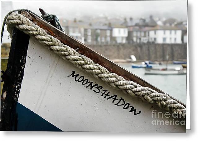 Moonshadow Greeting Cards - Misty Moonshadow Greeting Card by Susie Peek