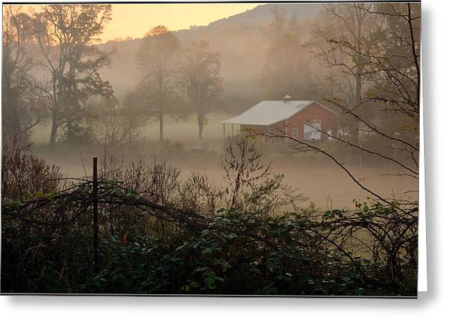 Fall Trees Greeting Cards - Misty Morn And Horse Greeting Card by Kathy Barney