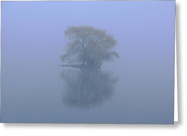 Recently Sold -  - Willow Lake Greeting Cards - Misty Morning at Jamaica Pond Greeting Card by Juergen Roth