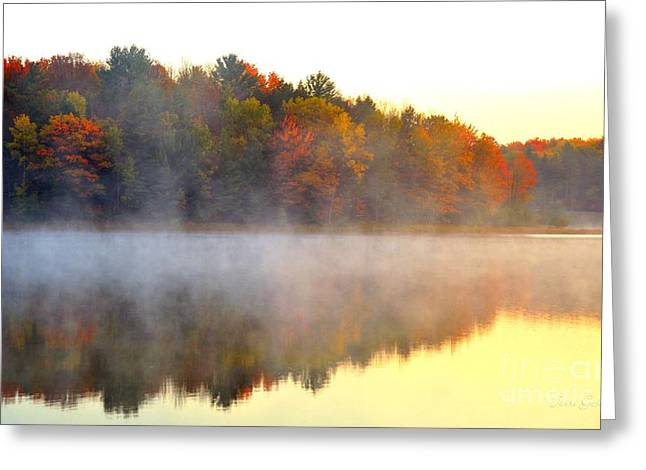 Misty Morning At Stoneledge Lake Greeting Card by Terri Gostola