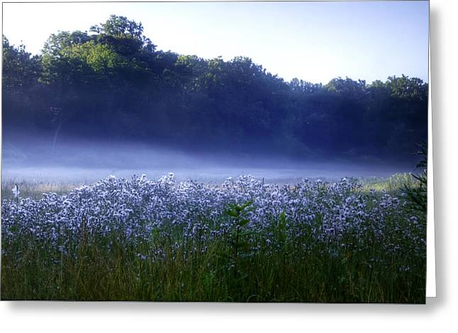 Dew Digital Art Greeting Cards - Misty Morning at Vally Forge Greeting Card by Bill Cannon