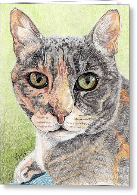 Muted Drawings Greeting Cards - Misty Morning Greeting Card by Audrey Van Tassell