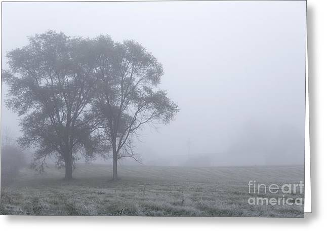 Ithaca Photographs Greeting Cards - Misty Morning Greeting Card by Evelina Kremsdorf