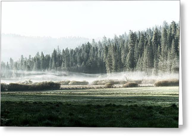 Yosemite Greeting Cards - Misty morning in Yosemite Greeting Card by Jane Rix
