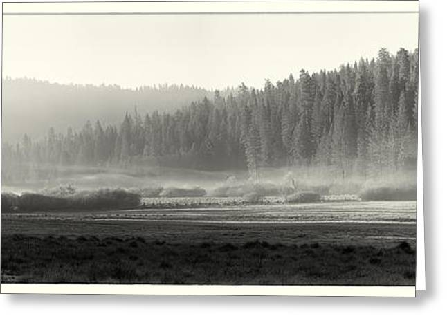 Pine-mist Greeting Cards - Misty morning in Yosemite Sepia Greeting Card by Jane Rix