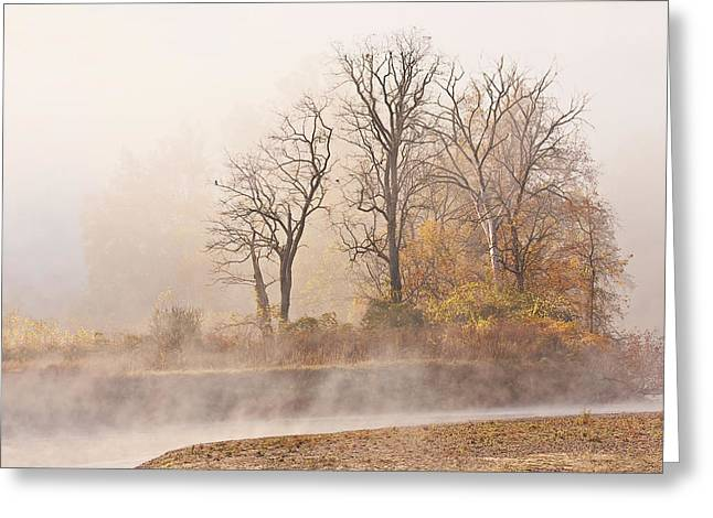 Beautiful Creek Greeting Cards - Misty Morning Greeting Card by Marcia Colelli