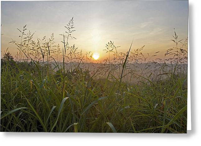 Branson Mo Greeting Cards - Misty morning Greeting Card by Michael Thomas
