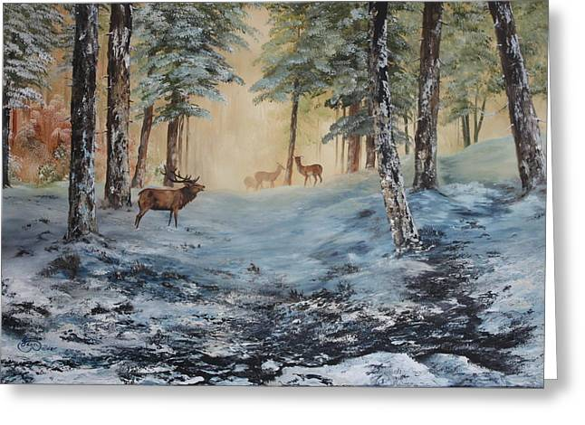 Sledge Training Greeting Cards - Misty Morning on Cannock Chase Greeting Card by Jean Walker