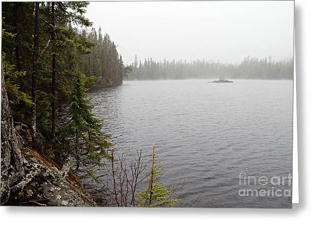 Misty Morning On Snipe Lake Greeting Card by Larry Ricker