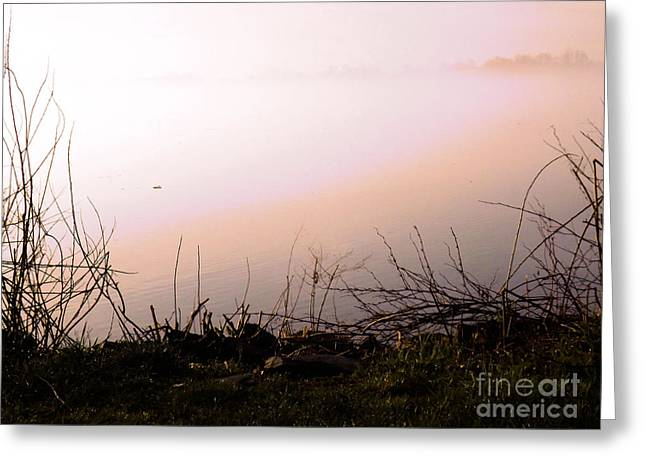 Uplifting Greeting Cards - Misty Morning Greeting Card by Robyn King