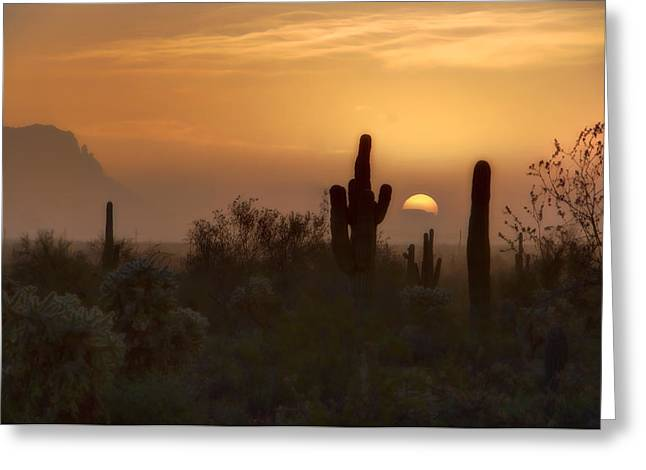 The Superstitions Greeting Cards - Misty Morning  Greeting Card by Saija  Lehtonen