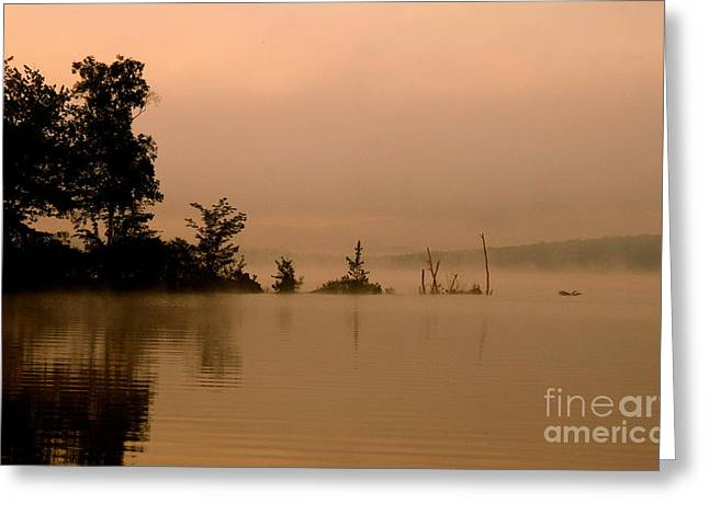 Neal Eslinger Photography Greeting Cards - Misty Morning Solitude  Greeting Card by Neal  Eslinger