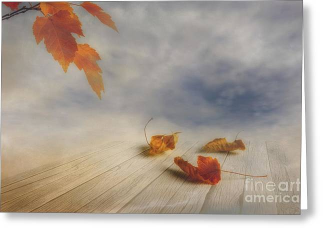 Multicolored Digital Greeting Cards - Misty morning Greeting Card by Veikko Suikkanen