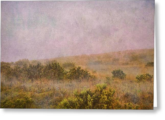 Google Digital Greeting Cards - Misty Mountain Greeting Card by Paulette B Wright
