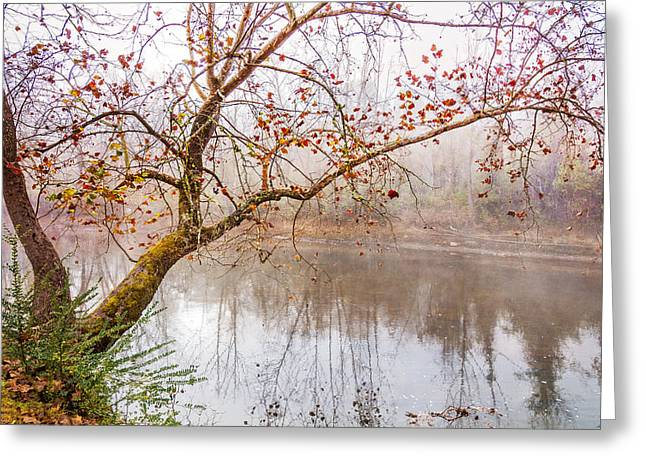 Tree Reflection At Sunset Greeting Cards - Misty River Greeting Card by Debra and Dave Vanderlaan