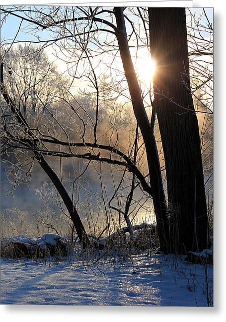 Snow Scene Landscape Greeting Cards - Misty River Sunrise Greeting Card by Hanne Lore Koehler