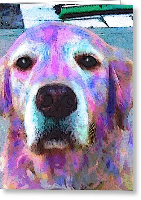 Dog Pop Art Greeting Cards - Misty Greeting Card by Robin Mead